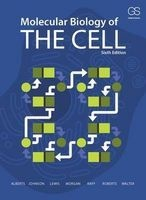 Molecular Biology of the Cell (Paperback, 6th Revised edition) - Bruce Alberts Photo