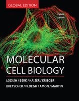 Molecular Cell Biology (Hardcover) -  Photo