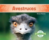 Avestruces (Ostriches ) (Spanish, Hardcover) - Grace Hansen Photo