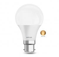 Astrum LED Bulb 12W 960 Lumens B22 - A120 Warm White Photo