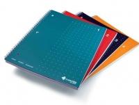 Livescribe Notebook A4 4PK Photo