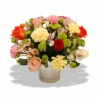 Carnations & Roses in a Bucket - Fresh Flowers Photo