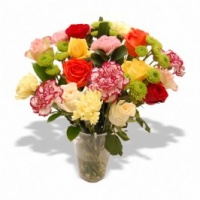 Carnations & Roses in a Vase - Fresh Flowers Photo