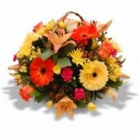 Basket of Mixed Flowers - Fresh Flowers Photo