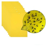 SDP 10 Packs Double-sided Stick Insect Board Yellow Board Melon Fruit Fly Trap Board Photo