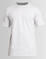 Utopia 100% Cotton T-Shirt Grey Melange Photo