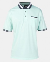 JCrew Plain Mercerised Cotton Golfer Mint Photo