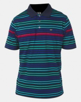 JCrew Striped Mercerized Golfer Multi Photo
