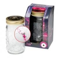 NA My Pet Firefly in Plastic Jar Photo