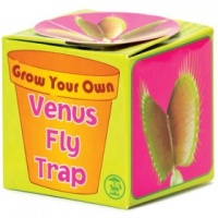Bicyclick Grow Your Own Venus Fly Trap Photo