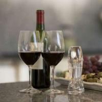Lego Vinturi Reserve Red Wine Aerator and Carafe Set Photo