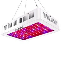 HIGROW LED HIGROW 1000W Double Chips LED Grow Light Full Spectrum Grow Lamp with Glasses and Rope Hanger for Indoor Greenhouse Hydroponic Plants Veg and Flower Photo