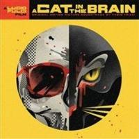 A Cat in the Brain Photo