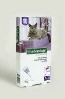 Bayer Advantage - Large Cats Photo