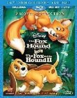 Fox & The Hound 2 Photo