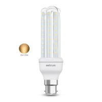 Astrum B22 K120 LED Corn Light Photo
