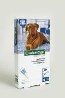 Bayer Advantage - Extra Large Dogs Photo