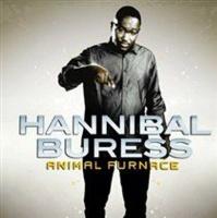 Animal Furnace Photo