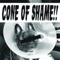 Reclamation Recordings Cone of Shame Photo