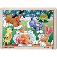 Playful Pets Jigsaw Photo