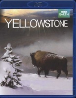 Yellowstone: Tales from the Wild Photo