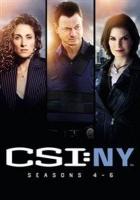CSI New York: Seasons 4-6 Photo