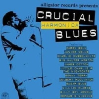 Crucial Harmonica Blues Photo