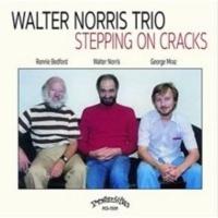 Stepping On Cracks Photo