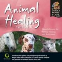 Animal Healing Photo