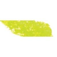 Sennelier Soft Pastel - Chromium Green 232 Photo