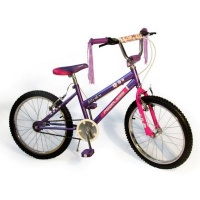 "Peerless BMX Flower Power Bike 20"" - Purple Photo"