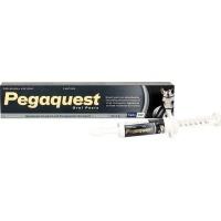 Ascendis Pegaquest Paste for Horses Photo
