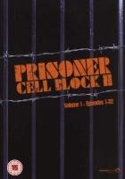 Prisoner Cell Block H Photo
