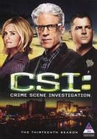 CSI Las Vegas - Season 13 Photo