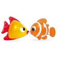 Tolo Kissing Fish Photo