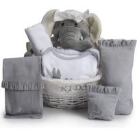 BebedeParis Essential Post-Hospital Baby Gift Basket Photo