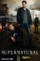 Supernatural - Season 8 Photo