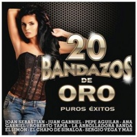 20 Bandazos De Oro CD Photo