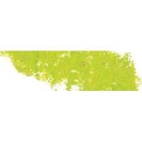 Sennelier Soft Pastel - Chromium Green 231 Photo