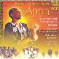 Exotic Voices From Africa Photo