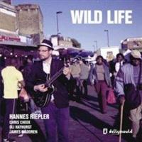 Jellymould Jazz Wild Life Photo