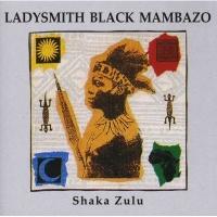 Shaka Zulu Photo