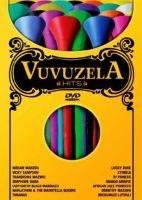 Vuvuzela Hits Photo