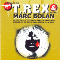 Tribute To T-rex - Tribute To T.Rex & Marc Bolan Photo