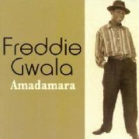 Gwala Freddie - Amadamara Photo