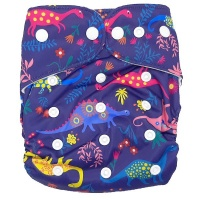 Fancypants All-In-One Cloth Nappy - Dino Photo