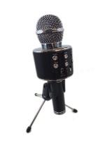 Everlotus Karaoke Microphone with Stand Photo