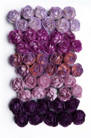 Bloom Peony - Purple Photo