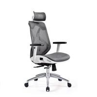 walkingpad WP Ergonomic Adjustable Office Chair with Lumbar Support Photo