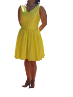 Yellow Fit and Flare Dress Photo